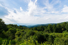 Scenic Summer Landscape on Overlook Drive Shenandoah National Pa Royalty Free Stock Photography