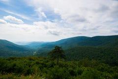 Scenic Summer Landscape on Overlook Drive Shenandoah National Pa Stock Photos