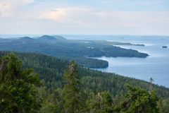 Summer landscape at the Koli National Park in Finland. stock image