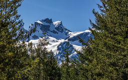 Scenic summer mountain hiking landscapes Canada. Summer mountain hiking landscapes of Provincial Park in British Columbia Canada Al's Habrich mountain trail Royalty Free Stock Image
