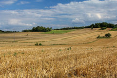 Scenic summer rural lanscape Stock Photos