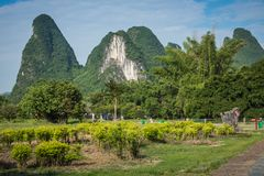 Scenic summer sunny landscape at Yangshuo County of Guilin, Chin. A. View of beautiful karst mountains Amazing green hills on blue sky background Royalty Free Stock Photo