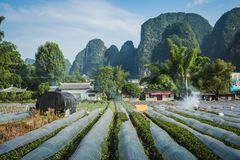 Scenic summer sunny landscape at Yangshuo County of Guilin, Chin. A Royalty Free Stock Photography