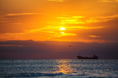 Scenic sunrise over the sea. Flying birds and sailing cargo ship Stock Photo