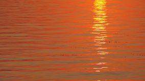 Scenic sunset over calm river stock footage