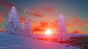 Scenic sunset over snowy winter firs Stock Image
