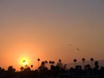 Scenic sunset in Santa Barbara Royalty Free Stock Photography