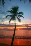 A scenic sunset view of the caribbean beach Stock Photos