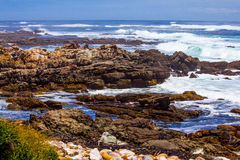 Scenic surf wave on rocky coastline. Surf wave (breaker) break on rocky coastline Stock Images