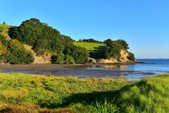 Scenic Te Haruhi Bay at Shakespear Regional Park Royalty Free Stock Photo
