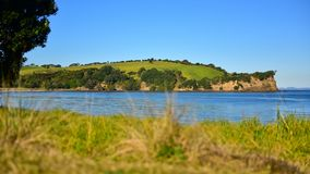 Scenic Te Haruhi Bay at Shakespear Regional Park Royalty Free Stock Photography