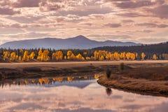 Scenic Teton Landscape Reflection Royalty Free Stock Images
