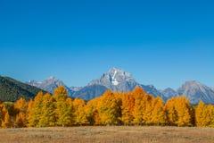Scenic Tetons in Autumn Royalty Free Stock Photos