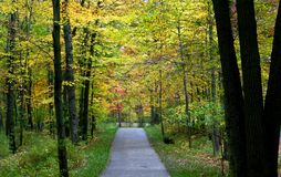 Scenic Trail Royalty Free Stock Photography