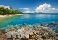 Scenic tropical beach with beautiful underwater world on backgro Stock Image