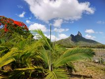 Scenic Tropical Mauritius Island, Indian Ocean stock photography