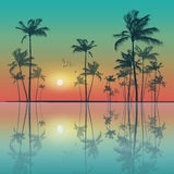 Scenic tropical palm tree landscape   at sunset or moonlight Royalty Free Stock Photos