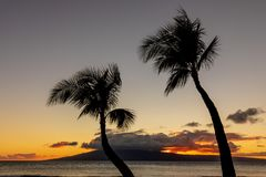 Scenic Tropical Sunset on Maui. Palm trees silhouetted in a beautiful tropical sunset on the island of Maui Stock Images