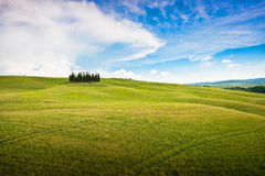 Scenic Tuscany landscape. In Val d'Orcia, Italy royalty free stock image