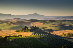 Scenic Tuscany landscape in golden morning light Stock Images