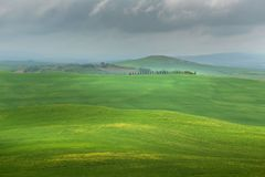 Scenic Tuscany landscape panorama with rolling hills and harvest fields in golden morning light stock photo