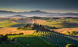 Scenic Tuscany landscape at sunrise, Val d'Orcia, Italy Royalty Free Stock Image