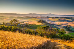 Scenic Tuscany landscape at sunrise, Val d'Orcia, Italy Royalty Free Stock Photography