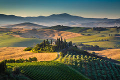 Scenic Tuscany landscape at sunrise, Val dOrcia, Italy. Scenic Tuscany landscape with rolling hills and valleys in golden morning light, Val dOrcia, Italy Stock Photo