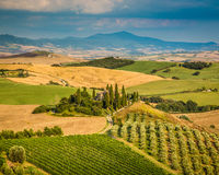 Scenic Tuscany landscape at sunset, Val d'Orcia, Italy Royalty Free Stock Images