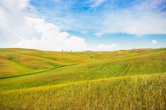 Scenic Tuscany landscape in Val d'Orcia, Italy Royalty Free Stock Photos