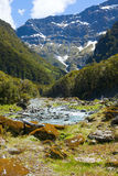 Scenic valley in New Zealand Royalty Free Stock Photos