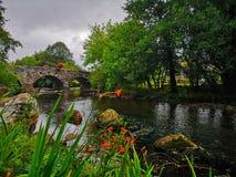 Scenic veiw of a bridge Royalty Free Stock Image