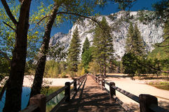 scenic vibrant yosemite landscape pictur Royalty Free Stock Photos
