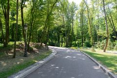 scenic view of asphalt path in park with tress under royalty free stock image