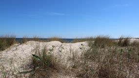 Scenic View On Baltic Seaside With Clump Of Grass On Borderland. Warm sunshine and viewpoint boundary line  between poland And Germany on baltic seaside Usedom Stock Images