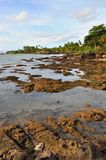 Scenic view of beach with rocks at Anyer Royalty Free Stock Photos