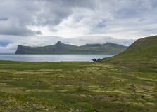 Scenic view on beautiful Hornbjarg cliffs in west fjords, remote nature reserve Hornstrandir in Iceland, with green meadow, flower. S, water stream and hills stock photo