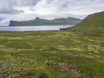 Scenic view on beautiful Hornbjarg cliffs in west fjords, remote nature reserve Hornstrandir in Iceland, with green meadow. Flowers, water stream and hills stock photography