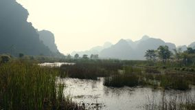 Scenic view of beautiful karst scenery, wetlands stock footage