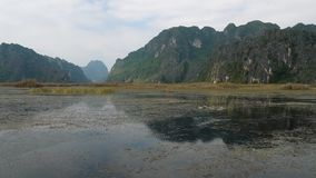 Scenic view of beautiful karst scenery, wetlands stock video