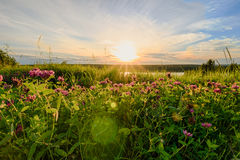 Scenic view of beautiful sunset above the lake Stock Images