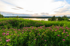 Scenic view of beautiful sunset above the lake Royalty Free Stock Photography