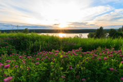 Scenic view of beautiful sunset above the lake Royalty Free Stock Photos