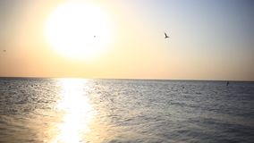 Scenic view of beautiful sunset above the sea. Fly stock video footage