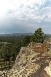 Black Hills National Forest, South Dakota, USA Royalty Free Stock Image