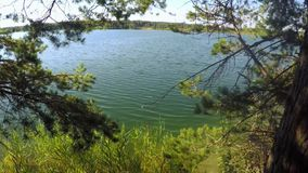 Scenic view of blue lake near trees. And grass stock footage