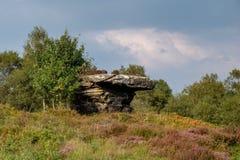 Scenic view of Brimham Rocks stock image
