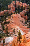 Scenic View into Bryce Canyon Stock Photography