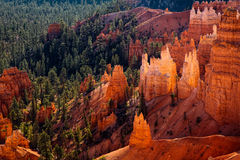 Scenic View of Bryce Canyon Stock Images