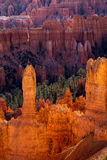 Scenic View of Bryce Canyon Stock Image
